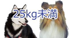 25kg未満